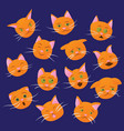 set of cat emotions vector image vector image