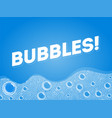 shampoo soap bubbles in bath or sud transparent vector image