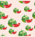 watermelon pattern seamless vector image