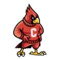 cardinal school mascot vector image vector image