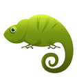 chameleon cute cartoon character vector image vector image