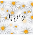 chamomile flower spring background vector image vector image