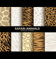 seamless patterns animal fur print leopard vector image vector image