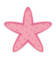 starfish wildlife on white background vector image vector image