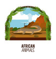 african animals cartoons vector image vector image