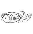 decorative fish drawing on white background vector image