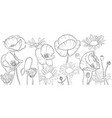 drawing poppies and daisy flowers vector image vector image