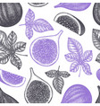 hand drawn fig fruits seamless pattern organic vector image