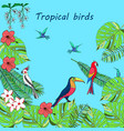 hand drawn tropical birds vector image