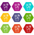heart cactus icons set 9 vector image vector image