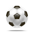 realistic detailed soccer ball vector image vector image