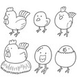 set of chicken and egg vector image vector image