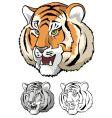 Tiger head close up vector image