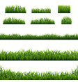 big set green grass borders background vector image vector image