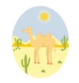 camel in the desert vector image