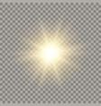 golden shining sun vector image vector image