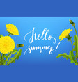 greeting card hello summer dandelion background vector image