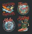 hawaii surfing vintage colorful badges vector image vector image
