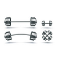 set icons barbells vector image