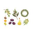 set olives fruit olive oil bottle tree branch vector image vector image