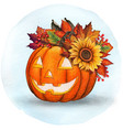 watercolor cute harvest pumpkin with sunflower vector image vector image