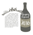 Wine bottle with a grapevine Lodge vineyards vector image