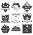 set of forest camp labels in vintage style vector image
