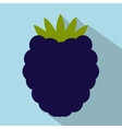 Blackberry flat icon vector image