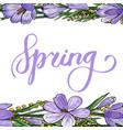 gentle spring banner vector image vector image