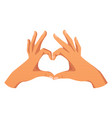love and heart symbol vector image