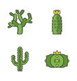 wild cacti color icons set vector image vector image