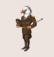 bald eagle character man in military uniform vector image