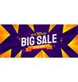 big sale banner discount background vector image