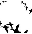 ducks flying south vector image vector image