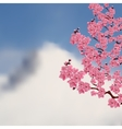 Flowering Japanese cherry Bush sakura on a vector image