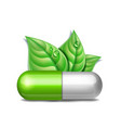 green natural medical pill with green leaves vector image