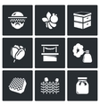 Set of Apiary Icons Beekeeper Bee Hive