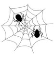 spiders sit on a web black silhouettes vector image
