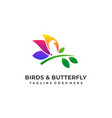 butterfly colorful and bird space with leaf vector image