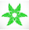 green native ornament vector image