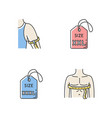 male size labels and measurements rgb color icons vector image