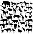 Set silhouettes animals and birds in the zoo vector image vector image