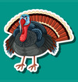 a turkey sticker character vector image vector image