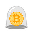 bitcoin in glass bell laboratory studies of vector image vector image