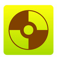 Cd or dvd sign brown icon at green vector image