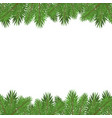 green christmas tree branches isolated on white vector image vector image