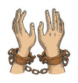 hands in handcuffs engraving vector image vector image