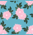 pink chrysanthemum on light blue background vector image vector image