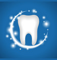 whitening of human tooth vector image vector image