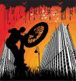 BMX urban vector image